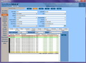 LandlordMax Property Management Software Screenshot: Tenants